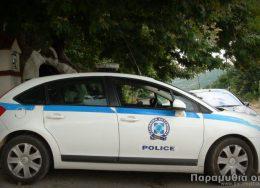 peripoliko_paramythia_police_seliani-260x188.jpg