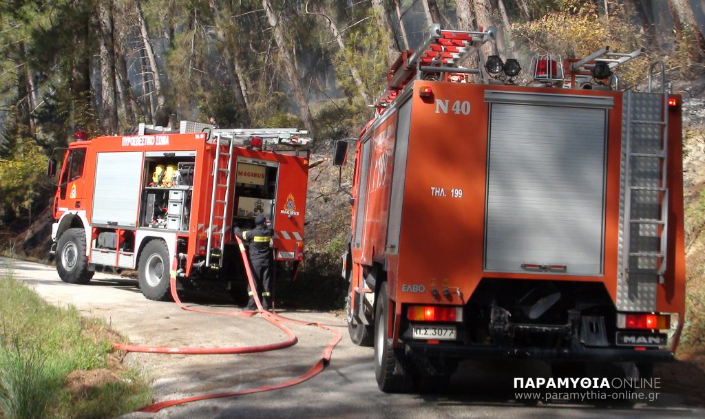 Θεσπρωτία: Και με δυνάμεις από την πυροσβεστική Θεσπρωτίας, η κατάσβεση της πυρκαγιάς στην Εύβοια