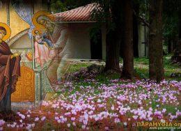 ipapanti_xalasma_paramythias-260x188.jpg