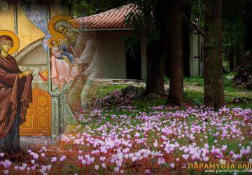 ipapanti_xalasma_paramythias-360x250.jpg