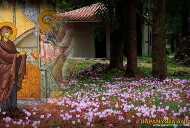 ipapanti_xalasma_paramythias-370x250.jpg