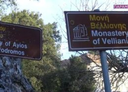 moni-velianis-260x188.jpg
