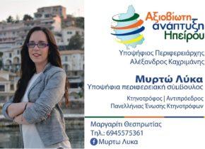 banner-elections-MIRTO-LIKA
