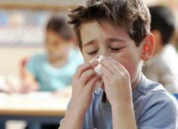 sxolio-gripi-260x188.jpg