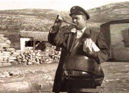 taxidromos-trompeta-260x188.jpg