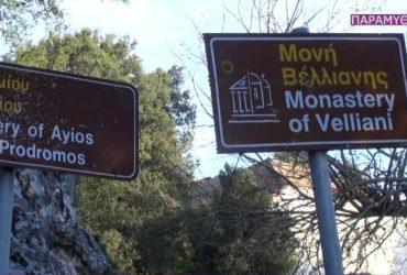moni-velianis-370x250.jpg