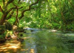 kalamas-river-epirus-greece-4c-260x188.jpg